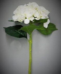 Hortensie weiß Seidenblumen Kunstblumen schmücken dekorierten Bunt, Plants, Fake Flowers, Hydrangeas, Decorating, Schmuck, Dekoration, Ideas, Other