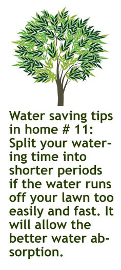 February 8th. 2013 Green idea #39: Split your watering time into shorter periods  if the water runs off your lawn too easily and fast. It will allow the better water absorption.