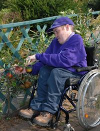 1000 images about landscape archi disabled person for Gardening tools for disabled