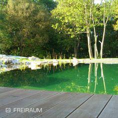 🌊 Swimming Pond 🏊♂ ca. 12 x 8 m 🎨 Folienfarbe hellgrau #schwimmteich #naturpool #pooldesign #biotop #biopool #chemiefrei #swimmingpond #naturteich #badeteich #wasserimgarten #gartendesign #schwimmen #nochemicals #naturnah #sustainableliving #nachhaltig #ressourcenschonen #garten #outdoorliving #swimming Pond, Swimming, Nice Asses, Swim, Water Pond, Garden Ponds