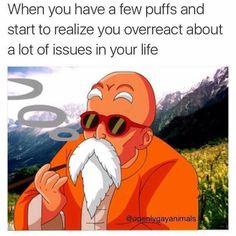 #weedfun #cannasosfun Weed Memes Humor, 420 Memes, Stoner Humor, Funny Memes, High Quotes Stoner, 420 Quotes, Monthly Subscription, Bigger Person, Marijuana Funny