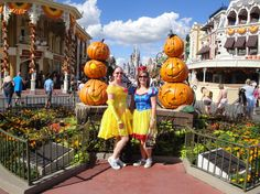 A look at Mickey's Not So Scary Halloween Party