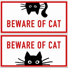 Funny Warning Signs, Funny Signs, Cat Stickers, Funny Stickers, Utility Room Designs, Cat Signs, Decorated Water Bottles, Cat Room, Vinyl Signs