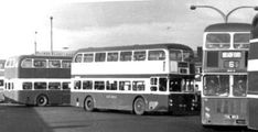 Buses And Trains, Busses, Coaches, Liverpool, Transportation, British, Trainers, Workout Trainer, England