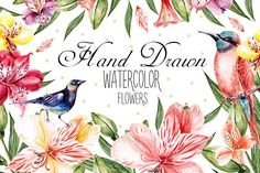 Hand Drawn Watercolor Flowers  by knopazyzy on @creativemarket