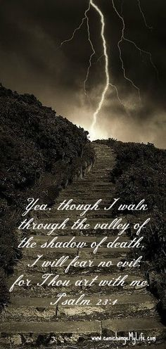 Yea, thou I walk through the Valley of the Shadow of Death, I will fear no evil for Thou are with me. www.canichangeMyLife.com