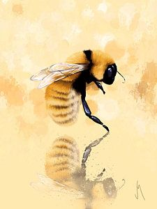 Shop for bee art from the world's greatest living artists. All bee artwork ships within 48 hours and includes a money-back guarantee. Choose your favorite bee designs and purchase them as wall art, home decor, phone cases, tote bags, and more! Bee Painting, I Love Bees, Bee Art, Bees Knees, Fauna, Mellow Yellow, Watercolor Flowers, Fine Art America, Thing 1