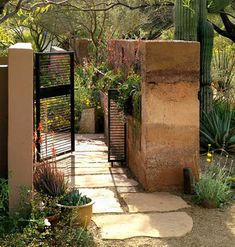 Hardy grasses and cacti planted in an English style (dense and lush) to provide texture and softness to your terrace - Desert garden - Beautiful old garden wall - Steel modern gate