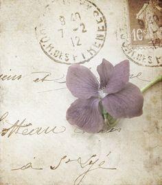 Vintage love letters old books 54 Ideas for 2019 Decoupage, Envelopes, Old Letters, Sweet Violets, Handwritten Letters, Vintage Lettering, Lost Art, Love Notes, Letter Writing