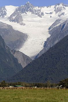 Fox Glacier, South Island, New Zealand Copyright: Simon Bolch Nz South Island, New Zealand South Island, Beautiful Places To Visit, Places To See, Landscape Photography, Nature Photography, New Zealand Holidays, Living In New Zealand, Bahamas