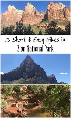 3 Short and Easy Hikes in Zion National Park - fairyburger