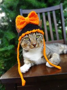Halloween Hat for Cats and Small Dogs in by iheartneedlework, $15.00