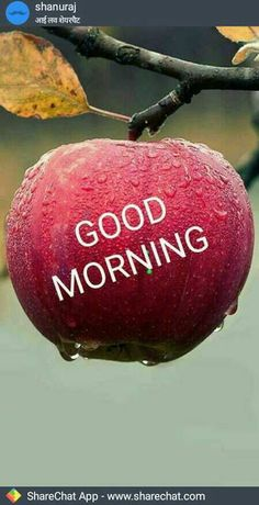 Good Morning Pictures 2018 In Hindi Punjabi English - Whatsapp Images<br> Romantic Good Morning Quotes, Good Morning Friends Quotes, Good Morning Beautiful Images, Morning Greetings Quotes, Good Morning Picture, Good Night Image, Good Morning Messages, Morning Pictures, Gud Morning Images