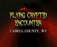 Flying Cryptid Encounter - Cabell County, WV - mothman, west virginia, flying cryptid, eyewitness account, unknown creature, unexplained activity, bizarre encounter, flying humanoids, http://www.phantomsandmonsters.com/2017/03/flying-cryptid-encounter-cabell-county.html