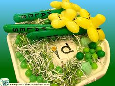 Wales - Saint David's Day - Dydd Santes Dwynwen - Daffodils Themed Phonics - Letter Sound Multi-sensory - Shredded Paper Tray Ideas Activities Welsh Gifts, Saint David's Day, Tuff Tray, Multi Sensory, Paper Balls, Shredded Paper, Paper Tray, Phonics Activities, Letter Sounds
