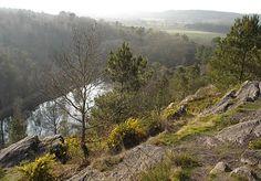 Le Val sans Retour (Forêt de Brocéliande, Bretagne)