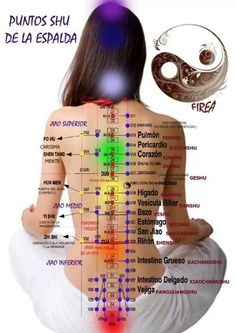 Puntos. Meridians of the body and charkra chart. #Shiatsu and relax one of the most effective modalities. Get to the root of your problems...for good health. The Way of Wellness Massage