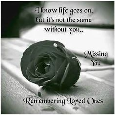 remembering loved one love quotes quote miss you sad rose in memory loved ones