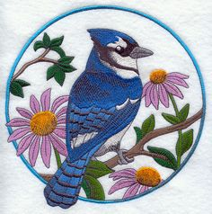 Blue Jay and Purple Coneflower Circle