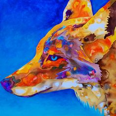 Painting of a coyote head done in a water color effect with warm colors and a blue background.