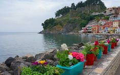 Photos from Spring in Greece! Greece, Spring, Water, Colors, Outdoor, Passion, Greece Country, Gripe Water, Outdoors