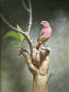 a bird in the hand/ visual puns/photoshop idea