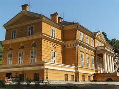 Castelul Regal Savarsin