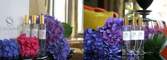 CASTADIVA AMBIENCE FRAGRANCE EXCLUSIVELY CREATED BY SCENT COMPANY CastaDiva Ambience Fragrance is a warm welcome to all the guests of Luxury 5 Stars CastaDiva Resort & Spa on Lake Como! CastaDiva Fragrance features notes of Calabrian Bergamot, French Violet, White Musk , Anise, Apple, Egyptian Jasmine, Brazilian Orange. This fragrance was created exclusively for CastaDiva by Scent Company and it is available at CastaDiva Spa. To get a bit of CastaDiva at Your Home!