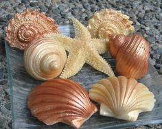 Decorative Seashell Soaps in Gold and Copper  - pretty and scented soap gift set