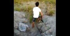 #ACTUALIDAD #FVnoticias Joven lanzo a su perro a un estanque lleno de cocodrilos para que se lo comieran vivo ( Video): Follow…