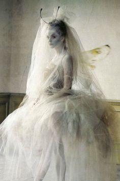 "#198. ""Lady Grey"" by Tim Walker"