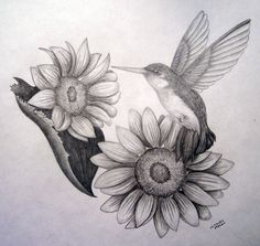 Hummingbird and sunflowers by MirandaAmber on DeviantArt
