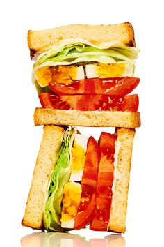 (Egg, Lettuce, and Tomato Sandwich) Recipe Tomato Sandwich, Best Sandwich, Sandwich Recipes, Dog Food Recipes, Vegetarian Recipes, Sandwich Board, Can Dogs Eat, Dog Eating, A Food