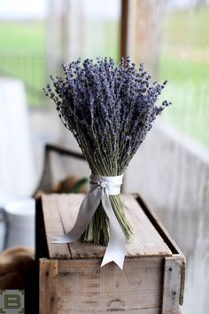Bouquet of Lavender from wedding at Gibbit Hill Farm in Groton, MA.