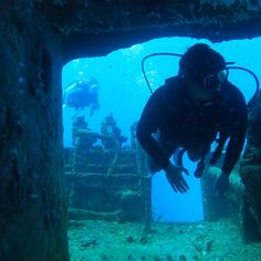First time scuba diving Hawaii, Beginners scuba in Honolulu, Hawaii. Scuba Diving Oahu, Sea Diving, Cliff Diving, Scuba Diving Gear, Cave Diving, Snorkeling, Marine Photography, Photography Jobs, Diving Videos