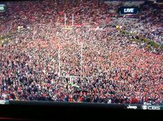"Victory!...Iron Bowl 2013...""War Eagle""!"