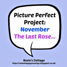 Rosie's Cottage: Picture Perfect Project: Novemeber: The Last Rose....