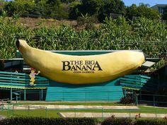 The Big Banana (Australia). Coffs Harbour