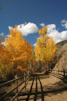 Industrial Revelations: A lovely Fall Road-Trip to Challis