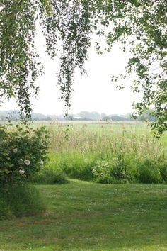 mowing along the edge of the farm~still my favorite thing to do in the summer...looking out over the farm~the woods~the land that so many before worked, loved, and tilled~