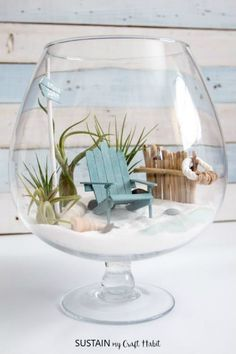 DIY Beachy Air Plant Terrarium #beachhousedecor #diycrafts