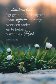 Servitude carries no servility but the freedom to be there for another human being and to help from your heart. Real Life Quotes, True Quotes, Best Quotes, Dutch Quotes, English Quotes, Prayer For My Family, Quitting Quotes, Speak The Truth, Flower Images