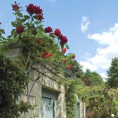 Our about us page - Garden Requisites. Order a door canopy, over door porch, garden arch, metal trellis or metal garden planter.