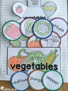 Vegetables - Interactive Notebook Activity and Game - This vegetable interactive notebook is great for the Kindergarten, 1st, 2nd, or 3rd grade classroom or homeschool. Students will enjoy the hands-on work of flippables and foldables to introduce or review vocabulary, as well as play a matching game with word circles! Use this to appeal to your visual style learners. This 20 page resource is great for your K, first, second, or third grader!