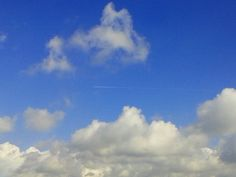 LIJN = (lijn vliegtuig) wazig, diagonaal, dun, lang, actief en rechte lijn