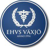 2008 – 2011  |  EHVS (Students Union,School of Business & Economics) | Växjö, Sweden