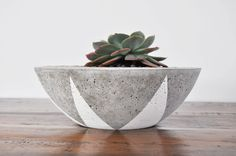 Concrete Planter Bowl  Small by foxandramona on Etsy, $40.00