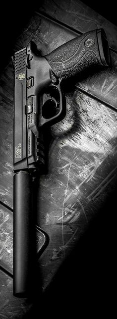 M.&.P 22 by Stickman. The length of suppressor on this 22 suggests someone with complex!