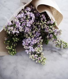 PURPLE LILAC - Getting married in March? See our seasonal flowers board for a…