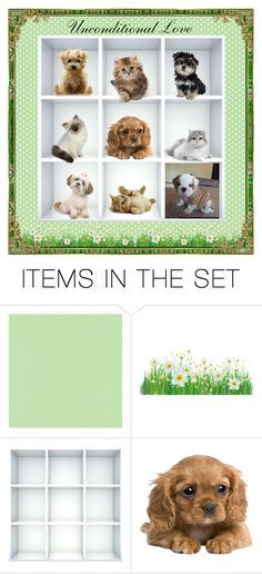 Unconditional Love by glassdreamshawaii on Polyvore featuring art, furryfriends, ArtSetWithPets and FamilyPets